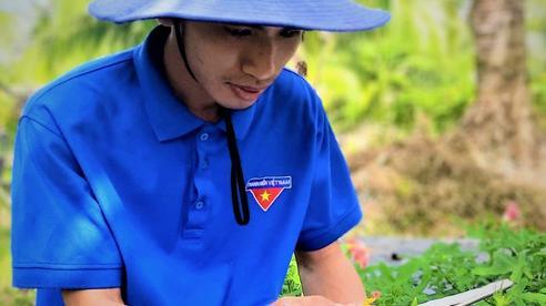 Nghề tư vấn kỹ thuật nông nghiệp công nghệ cao