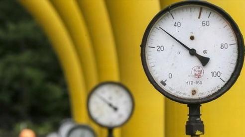 Tổng thống Putin: Nga sẵn sàng cung cấp thêm khí đốt cho châu Âu