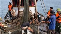 'Hung thần' tàu giã cào