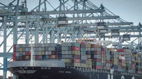 Tắc nghẽn cảng biển Đông Nam Á nghiêm trọng nhất trong hơn 6 tháng qua