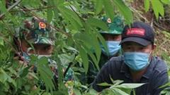 Bộ đội Biên phòng tỉnh Điện Biên: Cuộc chiến không khoan nhượng với tội phạm ma túy