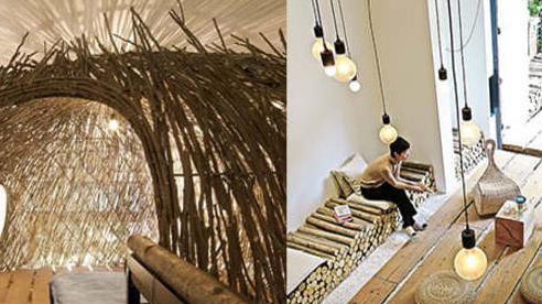 Xây cầu gỗ, dựng 'tổ chim', đưa cả thiên nhiên vào nhà để thực hiện ước mơ
