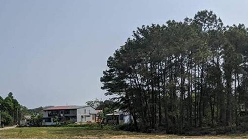Thừa Thiên Huế: Khởi tố, bắt giam chủ công ty bất động sản Khải Tín