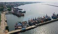 Quảng Nam: Mùa bão này, ngư dân đã yên tâm hơn