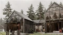 Ngôi nhà gỗ trong rừng thông ở Lâm Đồng đẹp đến mê người
