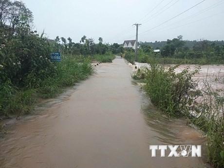 Mưa lớn trên diện rộng gây sạt lở, ngập úng nhiều nơi tại Đắk Nông