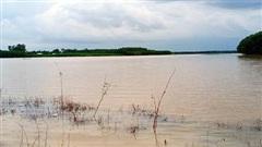 Bình Thuận: Mưa lớn kéo dài, hơn 1.200ha đất sản xuất ngập úng, thiệt hại gần 10 tỷ đồng