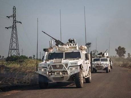 Việt Nam hoan nghênh tuyên bố ngừng bắn đơn phương của CH Trung Phi