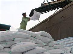 Nhu cầu thế giới tăng, cơ hội rộng mở với doanh nghiệp xuất khẩu gạo