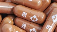 WHO lên kế hoạch hỗ trợ các nước mua thuốc chữa Covid-19 'siêu rẻ'