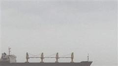 Lên phương án cứu hộ tàu hàng cùng 20 thuyền viên bị mắc cạn trên vùng biển Quảng Trị