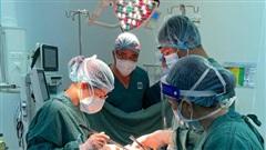 Lấy ra hơn 100 khối u trong bụng bệnh nhân ở TP.HCM