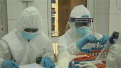 Xuất hiện 2 ca dương tính tại Hải Phòng đã được tiêm vaccine phòng COVID-19