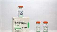 Vaccine Vero Cell hiệu lực bảo vệ tới 79%
