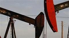 Thiếu nguồn cung đẩy giá xăng dầu tăng mạnh