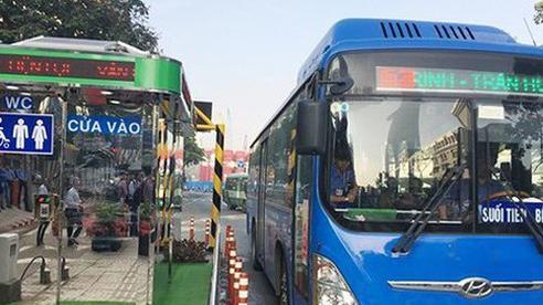 Thêm 8 tuyến xe buýt hoạt động lại ở TPHCM