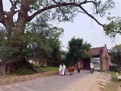Hà Nội: Xu hướng du lịch 'tại chỗ' bắt đầu thu hút khách