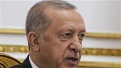 Lý do Thổ tuyên bố trục xuất 10 đại sứ phương Tây