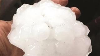 Trận mưa đá khác lạ ở Australia
