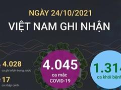 [Infographics] Việt Nam đã có 805.978 ca được công bố khỏi bệnh