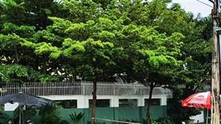 Thành phố Kon Tum có ca nhiễm Covid-19 cộng đồng đầu tiên