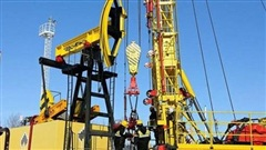 Giá dầu chạm mức cao nhất trong 7 năm