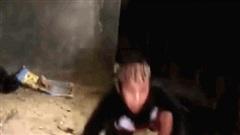 Video: Cô gái dùng tay không tóm gọn rắn hổ mang chúa