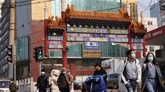 Trung Quốc báo động biến chủng virus cúm giá cầm gây tử vong cao