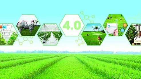 Sẽ mở rộng hợp tác 'công-tư' để phát triển nông nghiệp