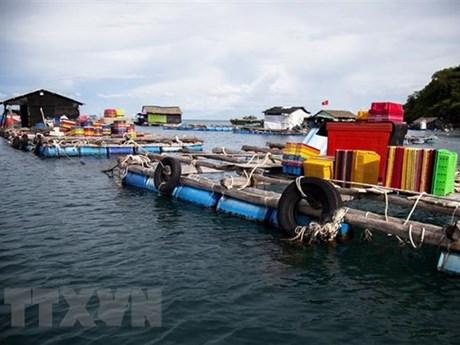 Ninh Thuận không để người dân ở lại trên tàu thuyền, lồng bè