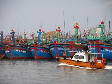 Bình Thuận nghiêm cấm tàu, thuyền ra khơi từ 6 giờ ngày 26/10