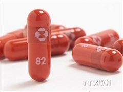 Indonesia đàm phán mua thuốc điều trị COVID-19 với hãng dược Mercks