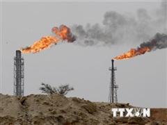 Ai Cập phát hiện 3 giếng dầu mới, sản lượng khoảng 50 triệu thùng dầu