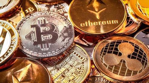 Giá Bitcoin lao dốc, thời điểm thử thách độ liều dân chơi
