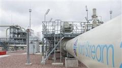 Berlin kết luận Nord Stream 2 không đe dọa an ninh năng lượng EU và Đức