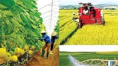 Phá bỏ '3 lời nguyền' của ngành nông nghiệp từ mô hình đa giá trị