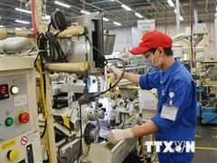 Hỗ trợ người lao động ở tỉnh quay lại TP.HCM và tìm kiếm việc làm