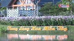 Ngàn hoa khoe sắc tại 'thung lũng hoa miền tây' ở Đồng Tháp