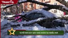 Tuyết rơi dày gây khó khăn tại nhiều nơi