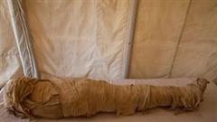 Bí mật tiết lộ từ kho báu 4.000 năm tuổi mới được khai quật ở Ai Cập