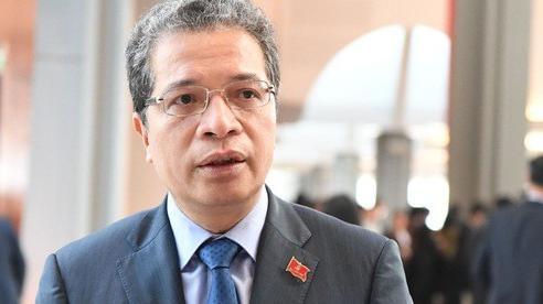 'Lòng tin của kiều bào Việt Nam ở nước ngoài vào đất nước ngày càng mãnh liệt hơn'