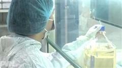 Việt Nam tiến tới tiêm miễn phí vaccine phòng Covid-19