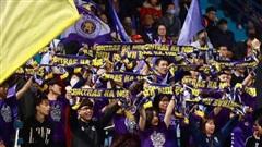 Fan Hà Nội FC kêu trời vì loạt thông tin 'pha ke' thiếu văn hóa về đội bóng con cưng trên Wikipedia
