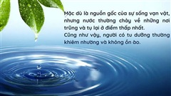 11 phẩm chất của nước mà con người nên học hỏi