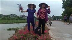 Hà Nội sẽ có thêm nhiều 'đoạn đường, tuyến phố nở hoa'