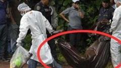 Vợ mang thai tẩm thuốc trừ sâu vào thức ăn giết chồng rồi đến đồn cảnh sát tự thú, đưa ra lời khai vừa đáng trách, vừa đáng thương