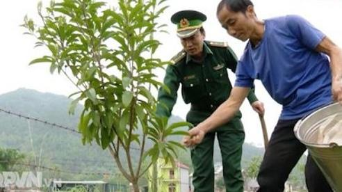 """""""Vườn mẫu"""" giúp dân phát triển kinh tế"""