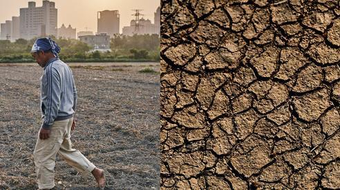 Hạn hán ở Đài Loan: Cắt nguồn nước của nông dân 'để dành' cho nhà máy sản xuất chip, phải hy sinh 1 trong 2 thì mới tồn tại