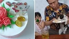 'Cô' mèo số hưởng khiến tất cả ghen tị: Được tổ chức sinh nhật riêng, có cả bánh kem và món cá rán yêu thích