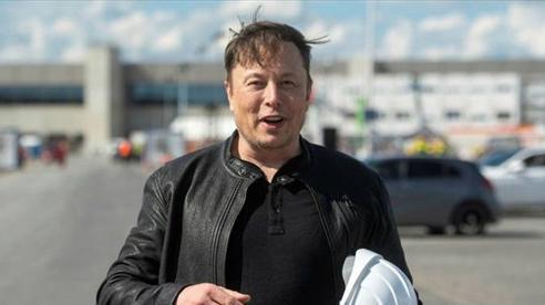 Kinh doanh kiểu Elon Musk: Dự định mua đứt một nhà máy chip vì thiếu chip để sản xuất ô tô